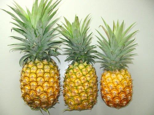 como vender abacaxi