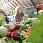 Loja de produtos orgânicos: Como abrir? Da dinheiro?