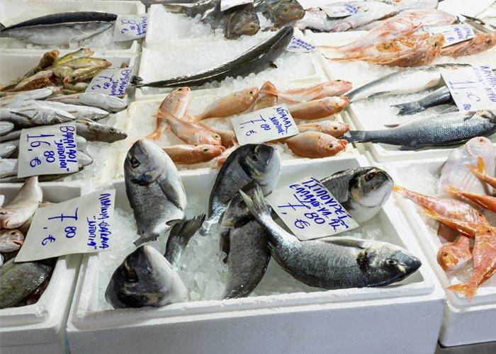 montar uma peixaria dá dinheiro