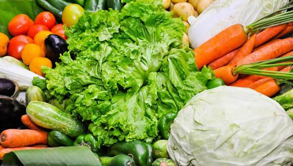 produtos organicos para vender em uma loja