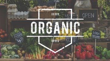 investir em franquias de produtos naturais dá dinheiro