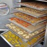 Fabrica de frutas desidratadas: Como fazer, vender e lucrar?