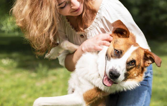 Quanto ganha um pet sitter