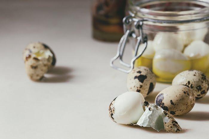 Vender conserva de ovo de codorna industrial
