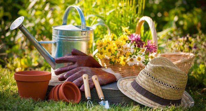 Como montar uma empresa de serviços de jardinagem