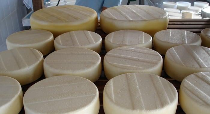 comprar queijo para revender