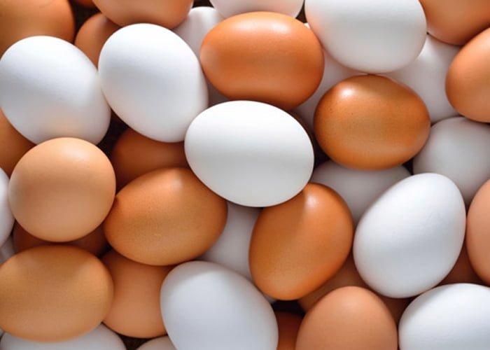 Onde comprar ovo para revender