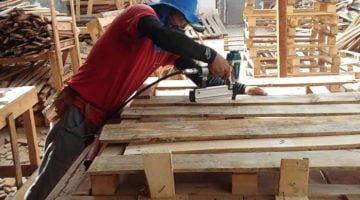como abrir uma fábrica de paletes de madeira