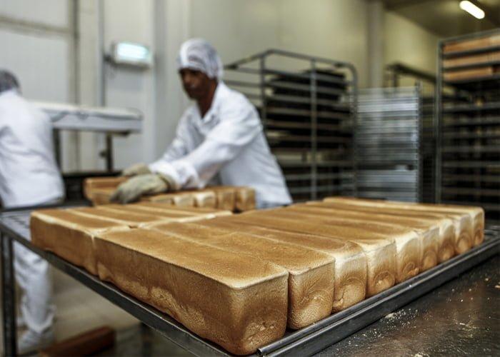 como montar uma fábrica de pão de forma