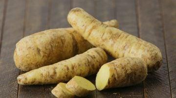 como plantar batata baroa