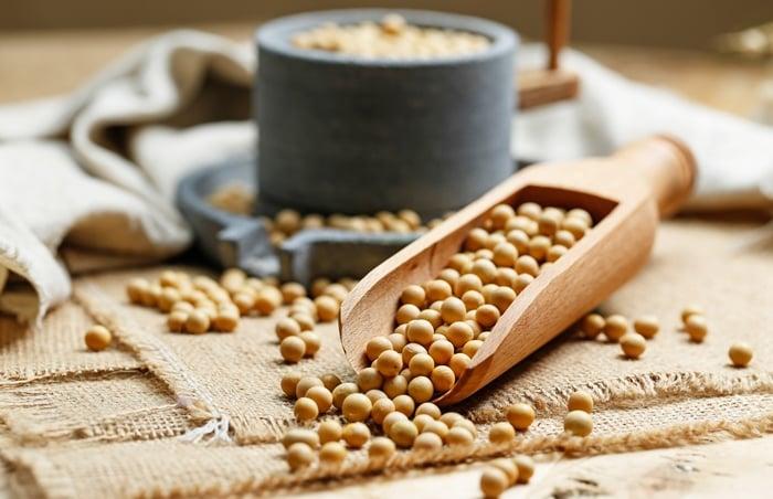 produtos feitos com a soja