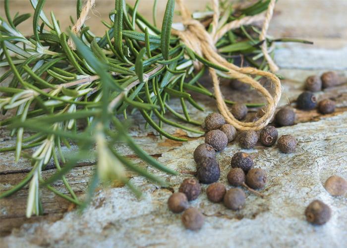fornecedor de ervas medicinais a granel
