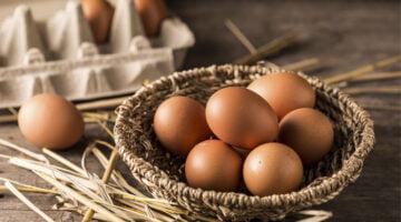 Como montar uma distribuidora de ovos