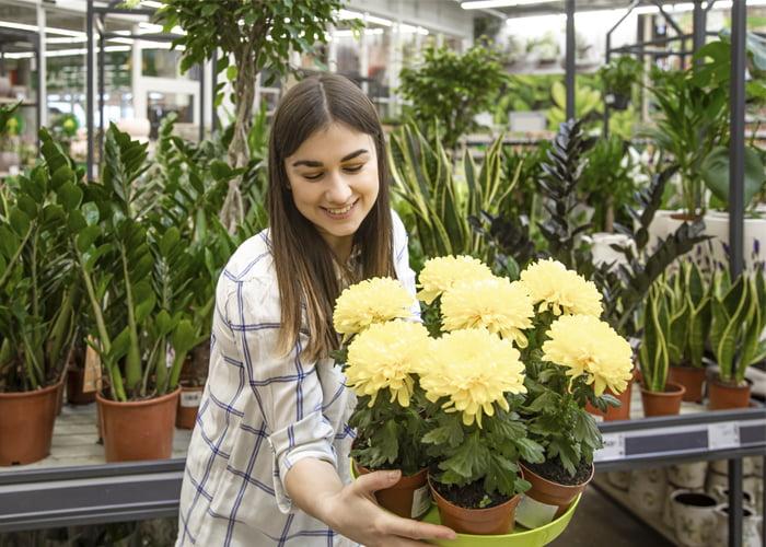 Quanto fatura uma loja de plantas